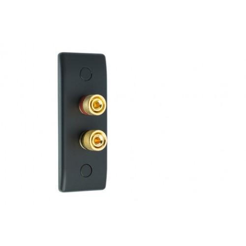 Matt Black Slimline Architrave 2 Binding Post Speaker Wall