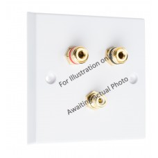Polished Brass Flat Plate 1.1 Speaker Wall Plate - 2 Terminals + 1 x RCA - Rear Solder tab Connections