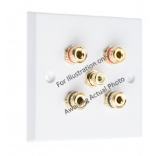 Polished Brass Flat Plate 2.1 Speaker Wall Plate - 4 Terminals + 1 x RCA - Rear Solder tab Connections