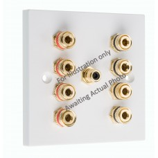 Stainless Steel Brushed Flat Plate 4.1 1 Gang Speaker Wall Plate 8 Terminals + RCA Phono Socket - No Soldering Required