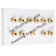 Polished Brass Flat Plate 5.1 Speaker Wall Plate - 10 Terminals + 1 x RCA - Rear Solder tab Connections