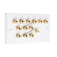 Polished Brass Flat plate 6.1 Speaker Wall Plate 12 Terminals + 1 RCA Phono Socket - Two Gang - No Soldering Required