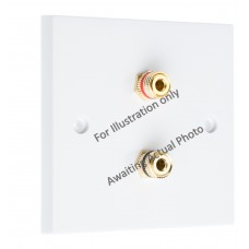 Polished Brass Flat plate - 2 Binding Post Speaker Wall Plate - 2 Terminals - No Soldering Required