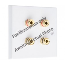 Polished Brass Flat plate - 4 Binding Post Speaker Wall Plate - 4 Terminals - No Soldering Required